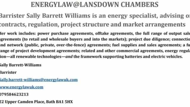 Expert in Energy Law